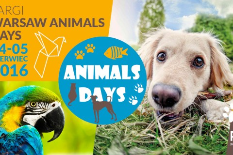 Pies na urlopie partnerem Targów – Warsaw Animal Days!
