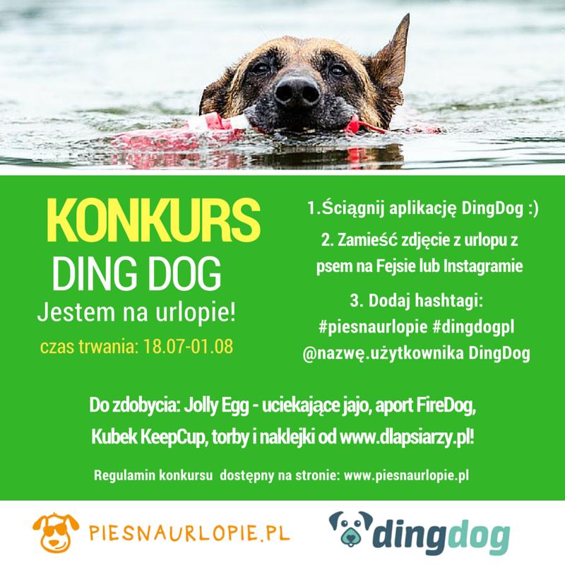 Konkurs Ding Dog i Pies na urlopie